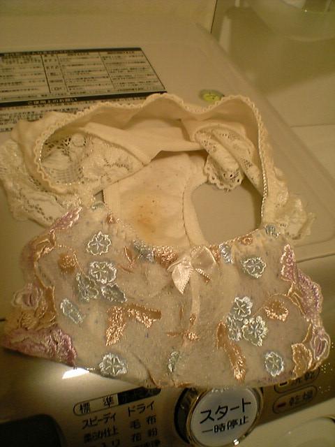美人姉のシミ付き洗濯機の中の下着盗撮エロ画像3枚目