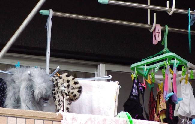 ベランダの姉と妹の混合下着盗撮エロ画像13枚目