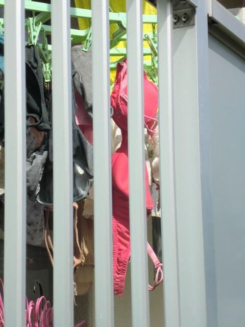 清楚処女女子大生のベランダの下着盗撮エロ画像8枚目