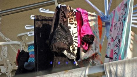 貧乳Bカップjk妹のベランダの下着盗撮エロ画像13枚目