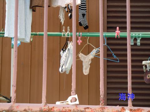 jk妹の姉の下着に紛れたベランダ下着盗撮エロ画像5枚目