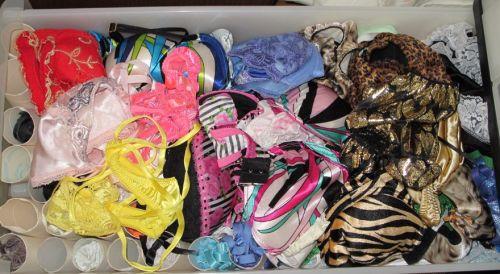サテン下着が多めな女子大生の姉のタンス内盗撮画像15枚目